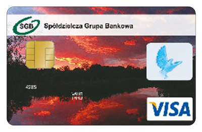 Visa kredytowa