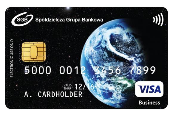 Visa Business payWave