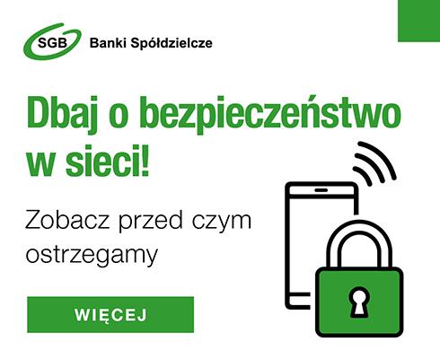 Bezpieczeństwo, cyberbezpieczeństwo